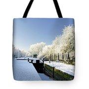 The Frozen Dallow Lane Lock Tote Bag