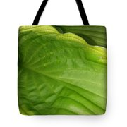 The Funnel Tote Bag