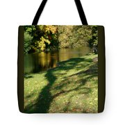 The Game Of Shadows Tote Bag