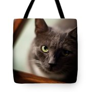 The Gaze Tote Bag