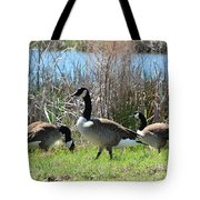 The Geese Are Back Tote Bag
