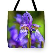 The Gentleness Of Spring 4 - Paint Tote Bag