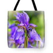 The Gentleness Of Spring 5 - Vignette Tote Bag