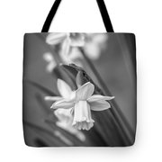 The Gentleness Of Spring Bw Tote Bag
