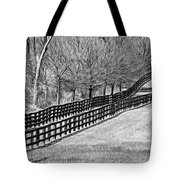 The Geometry Of Spring - Paint Bw Tote Bag