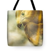 The Glass Case Eagle Tote Bag