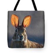 Golden Ears Bunny Tote Bag