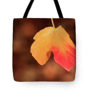 The Golden Leaf Of Fall Tote Bag by Tracy Hall