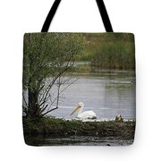 The Goose And The Pelican Tote Bag