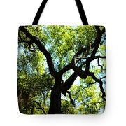 The Grace Of A Lonely Tree Tote Bag