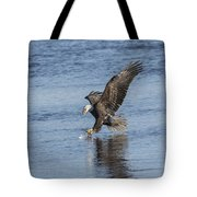 The Great American Bald Eagle 2016-8 Tote Bag