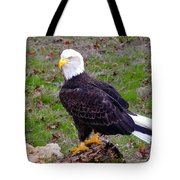 The Great Bald Eagle Tote Bag