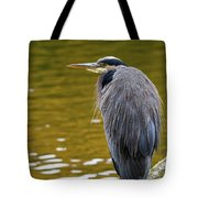 The Great Blue Heron Perched On A Tree Branch Tote Bag