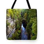 The Great Chasm Tote Bag