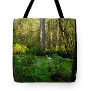 The Great Corkscrew Swamp Tote Bag