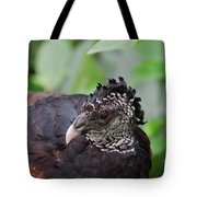 The Great Curassow 3 Tote Bag