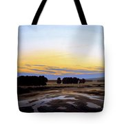 The Great Enclosure Near Dresden Tote Bag