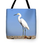 The Great Snowy Egret Tote Bag