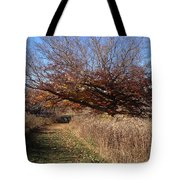 The Green Grass Road Tote Bag