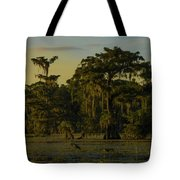 The Green Green Trees Of Home Tote Bag
