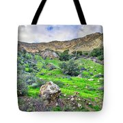 The Greening Of The Las Llajas Trail  Tote Bag