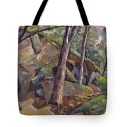 The Grotto Tote Bag by Don Perino