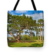 The Grounds Of The Kingsley Plantation Tote Bag