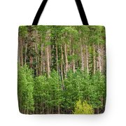 The Grove Tote Bag