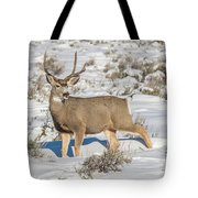The Gtnp Mule Deer Buck Tote Bag
