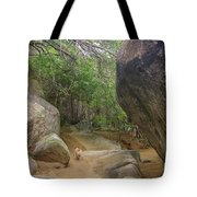 The Guide To The Bath Virgin Gorda Island Tote Bag