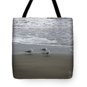 The Gulf In Shades Of Gray - Formation Tote Bag