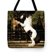 The Gypsy King Tote Bag