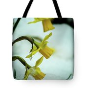 The Hand Over Tote Bag