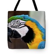 The Happy Macaw Tote Bag