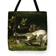 The Happy Wolf Tote Bag