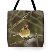 The Haridan - Northern Cardinal - Cardinalis Cardinalis  Tote Bag