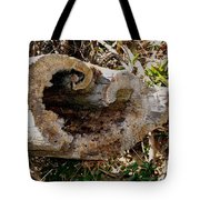 The Heart Of The Tree Tote Bag