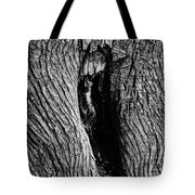 The Hermit In The Woods Tote Bag