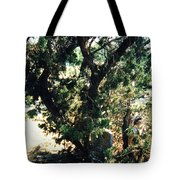 The Hidden Grave Tote Bag