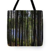The Hidden Lake Tote Bag