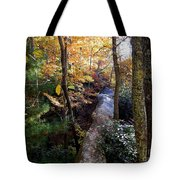 The Hidden Log Rock Tote Bag