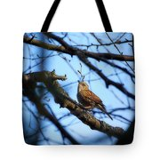 The Hiding Singer. Dunnock Tote Bag
