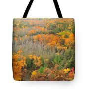 The High Rollaways Tote Bag