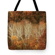 The Hills In Autumn Tote Bag