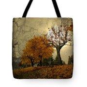 The Holder Of Light Tote Bag