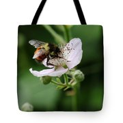 The Honey Gatherer Tote Bag
