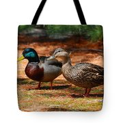 The Honeymooners - Mallard Ducks  Tote Bag