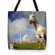 The Horse And The Chapel Tote Bag