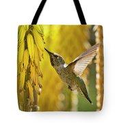The Hummingbird And The Yellow Aloe  Tote Bag