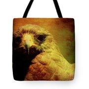The Hunter . Portrait Of A Hawk . Texture . 40d7877 Tote Bag